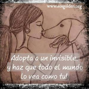 Campaña: Adopta un invisible!
