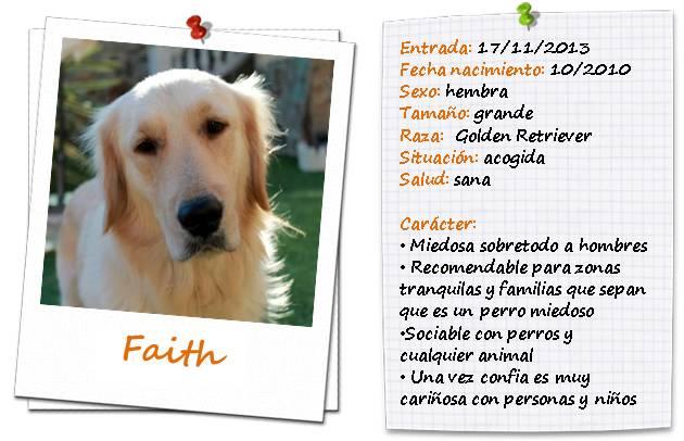 faithficha2