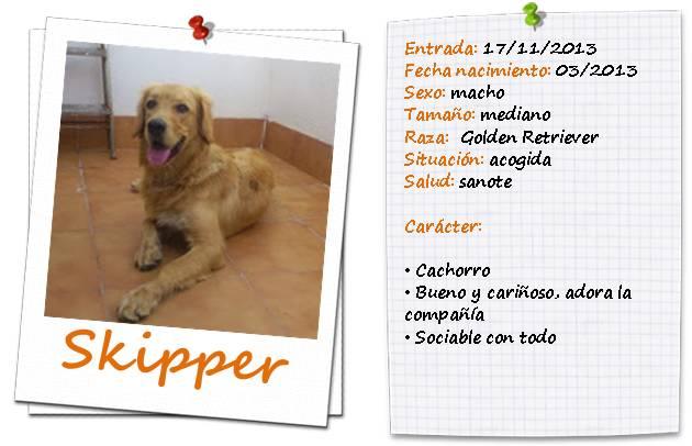 skipperficha