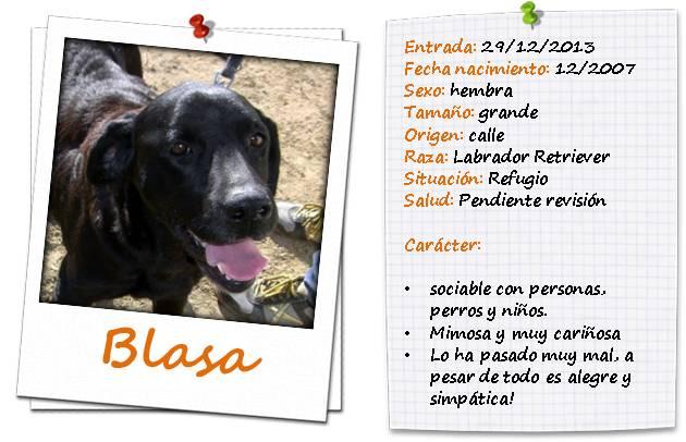 blasaficha