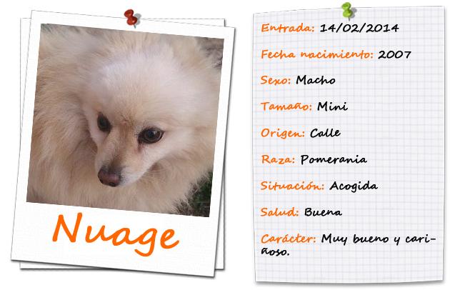 fitxanuage2