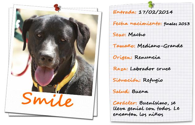 smilefitxa2