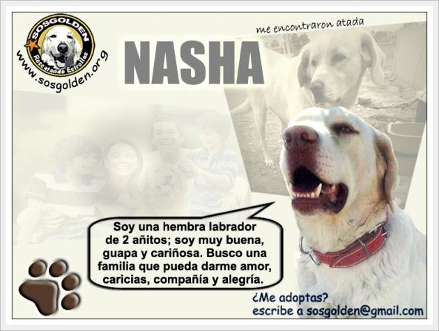 familiaNasha