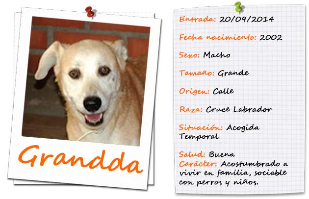 grandda_ficha