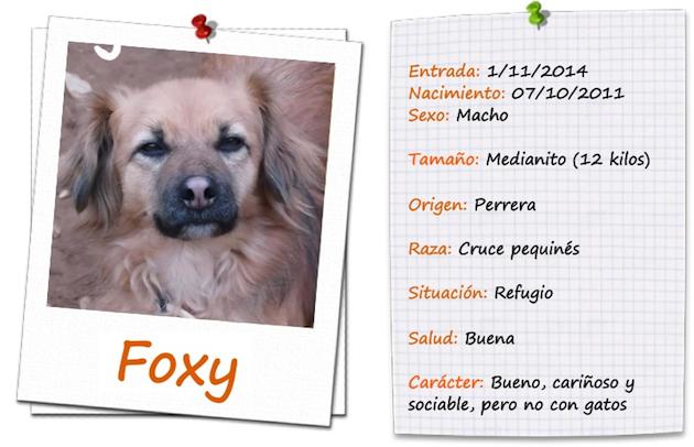 foxy ficha