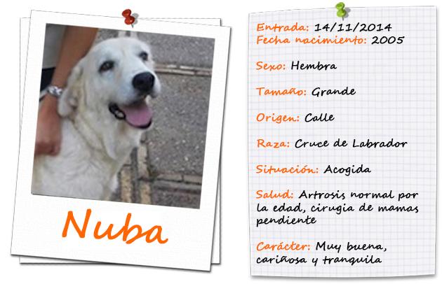 nuba_ficha