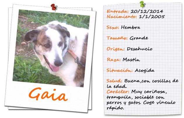 gaia_ficha