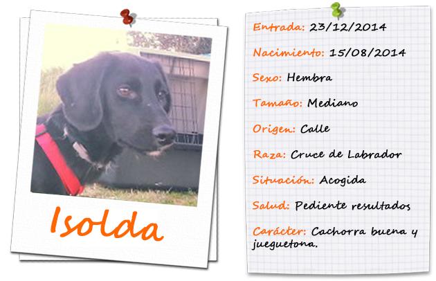 isolda_ficha