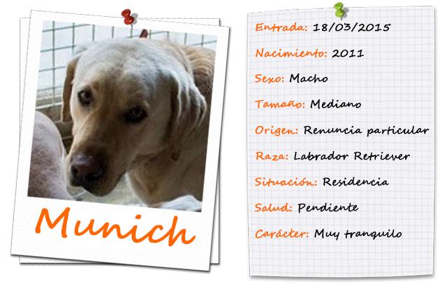 munich_ficha