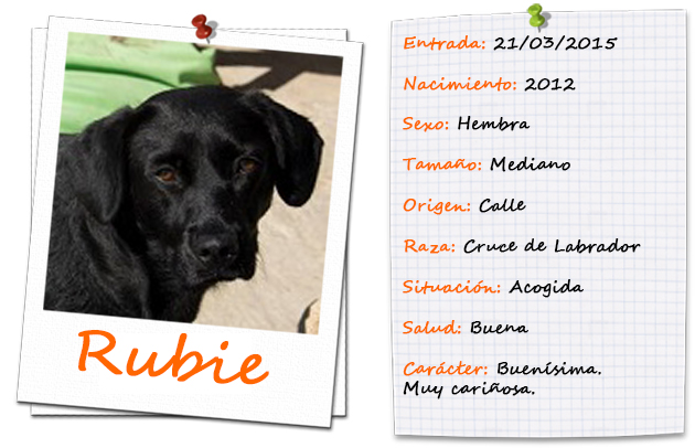 rubie_ficha