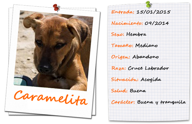 caramelita_ficha