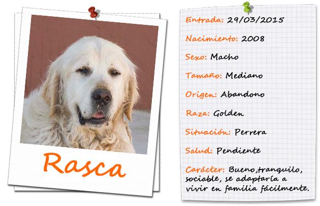 rasca_ficha