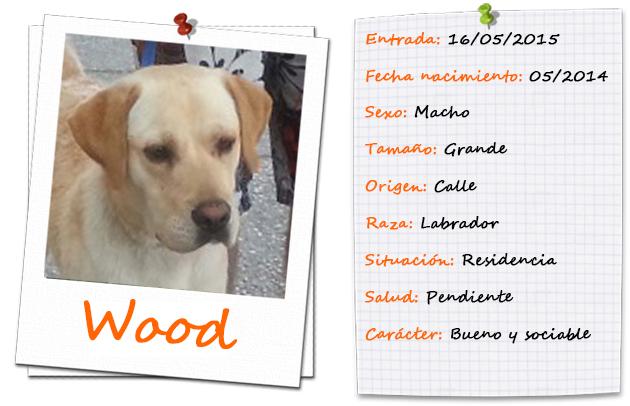 wood_ficha